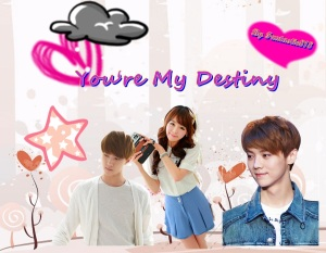 you're my destiny