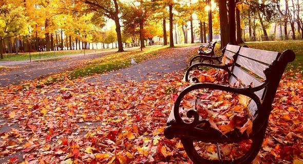 22_wonderful_autumn_
